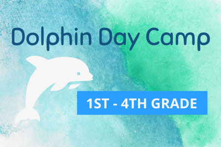 Dolphin Day Camp